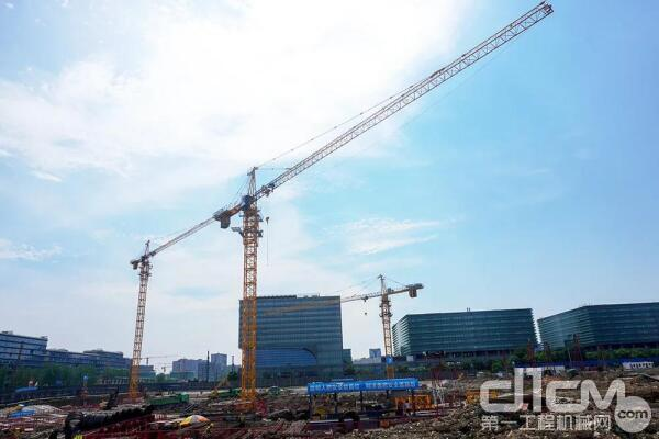 在庞源租赁的设备阵营中,中联重科塔式起重机数量已占到50%以上